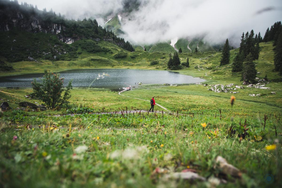 Vorarlberg_Tourismus_minweag_stanglechner_bregenzerwald